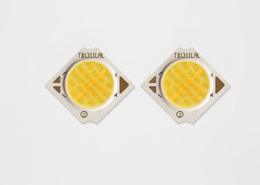18.6V High Efficient White Cob Led 6W Smart Appearance No Light Harmful For Plant